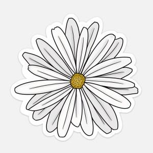daisy sticker vsco aesthetic laptop