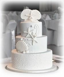 Shell and Cornelli Wedding cake