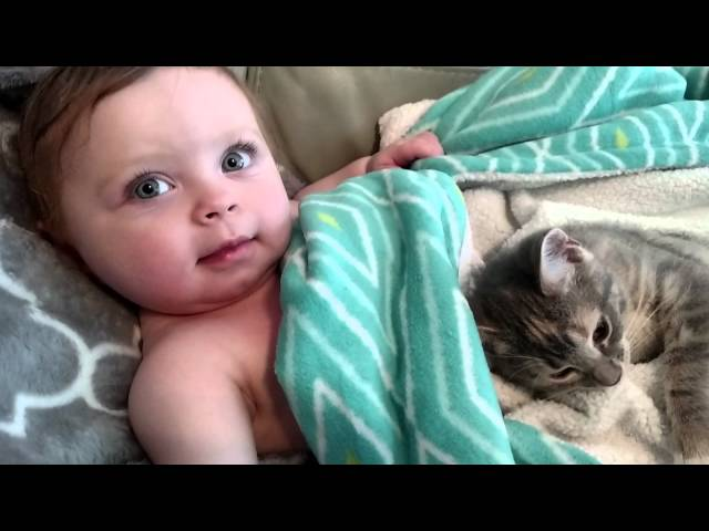 A Baby and Her New Kitten