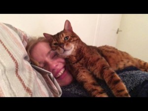 Video Tonto the Cat Approves Of His Human's New Girlfriend