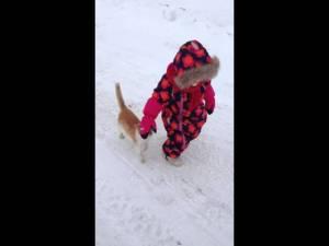 Cute Little Kitten Body Slams Kid