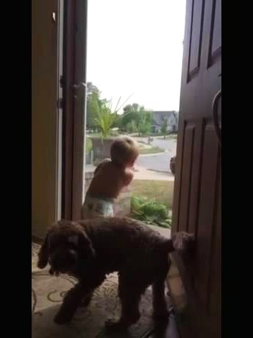 (VIDEO)Toddler and Dog Daddy's Home