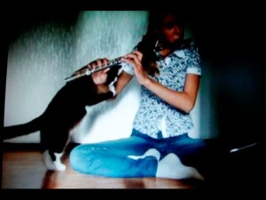 Cat Doesn't Like Hearing Her Play the Flute