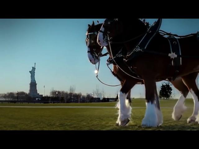 Budweiser '9/11 Tribute' Super Bowl Ad