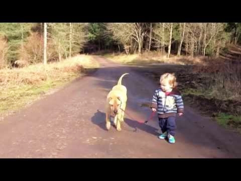 Best Friends - Kid, Dog and Puddle