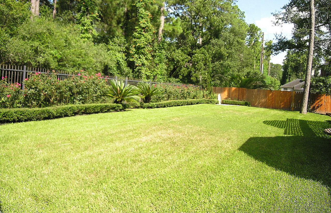 Backyard Wallpapers Posted By Michelle Sellers