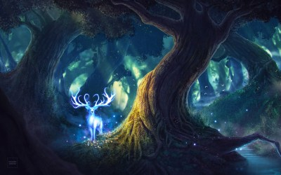 Fantasy Forest Wallpaper posted by Ryan Anderson