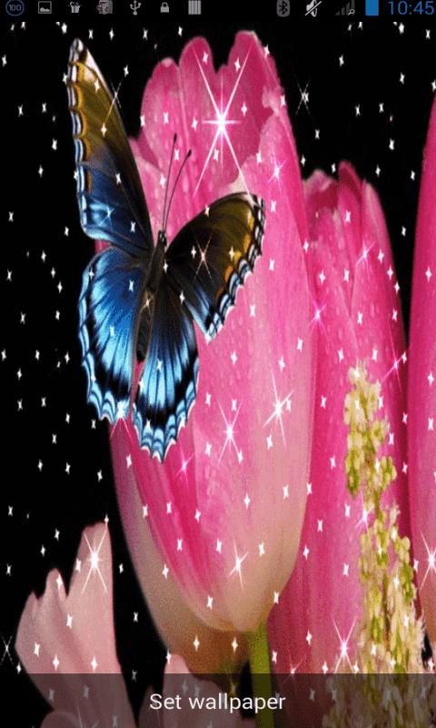 Glitter Butterfly Wallpaper - Top Wallpapers