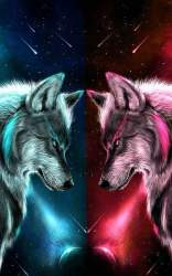 Galaxy Wolf Wallpaper posted by Christopher Johnson
