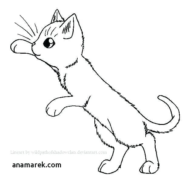 Cat Warriors Coloring Pages Coloring Pages For Kids