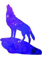 Wolf Galaxy posted by Samantha Tremblay