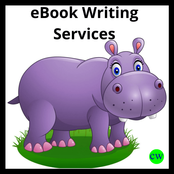 Best-eBook-Writing-Services
