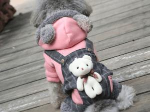 Warme kleding voor katten en honden