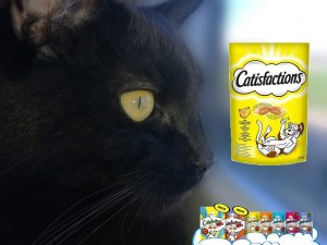 CATISFACTIONS (Dreamies) Kattensnoepjes 60g