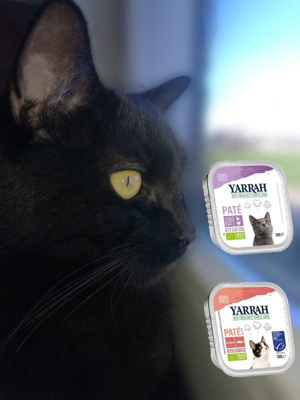 Yarrah Biologisch Kattenvoer Paté met een zwarte kat