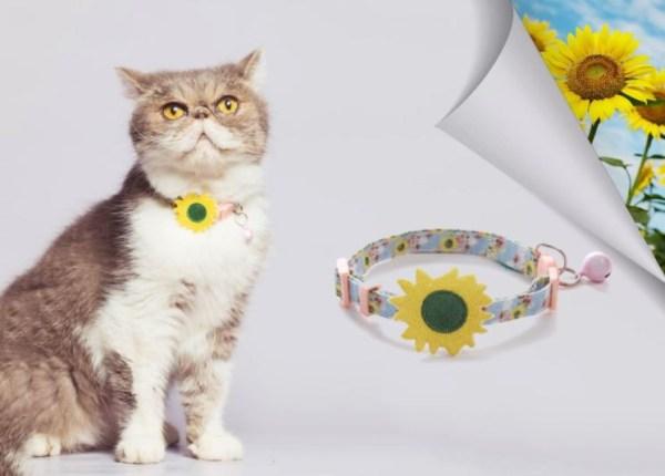 Kat draag kattenhalsband met zonnenbloem