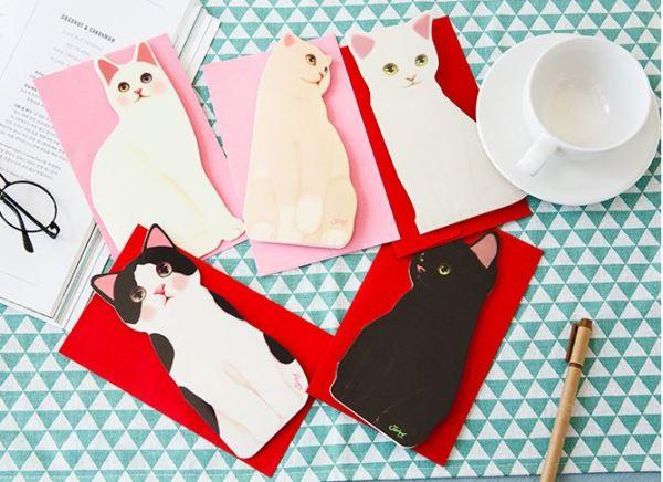 De verschillende 3D Kattenkaarten met Envelop