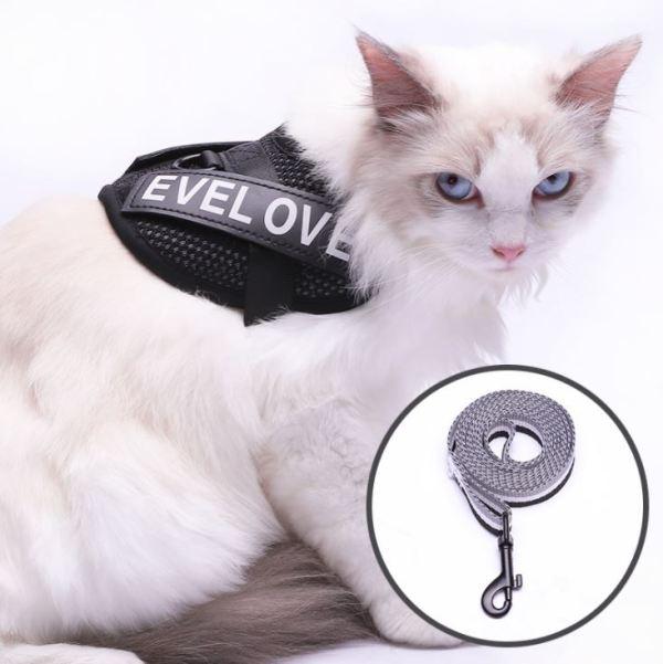 Kattenharnas met Leiband is ontsnapbestendig