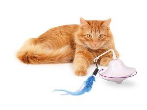 Elektronisch Kattenspeelgoed met Veer