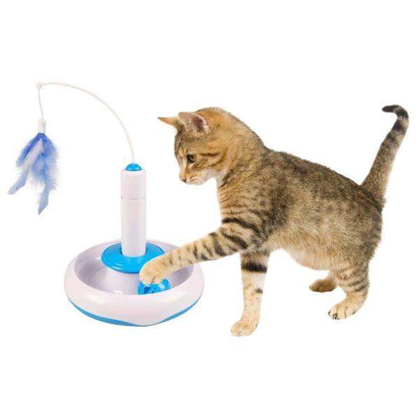 Kattenhengel en bord met bal
