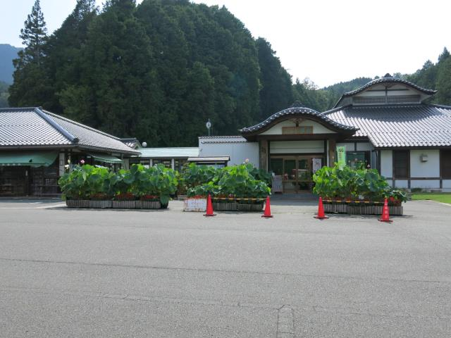 camp_yofudo_02