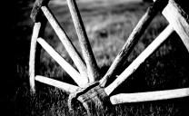 Wheel - Sarah Eakins - Kodak Technical Pan 35mm - Fujica ST750W