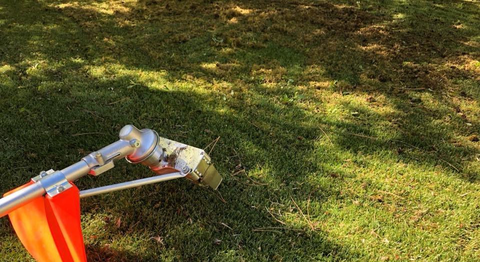 Artificial grass moss removal