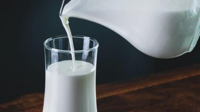 Photo of Analyzing Milk Options: Coconut, Dairy, Soy, Rice, Cashew, and Almond