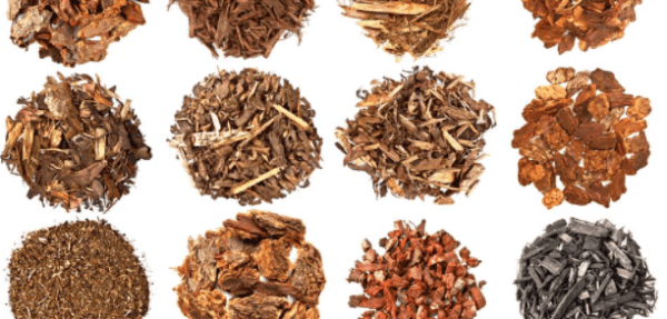 type and color of mulch