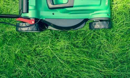 Your lawn and landscape maintenance with professional tools