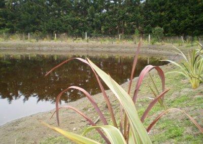Titoki Road, 5-lot subdivision, Waikanae