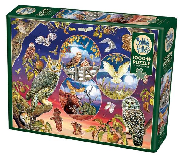 Cuy Games - 1000 PIEZAS - OWL MAGIC -