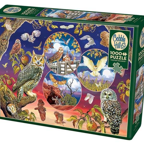 1000 PIEZAS – OWL MAGIC