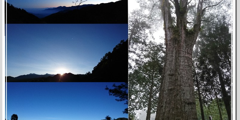 【遊記】輕旅行-阿里山 DAY 2