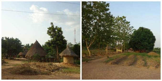The beautiful green Mu Village, 74KM from Makurdi