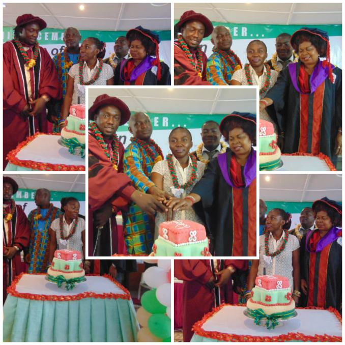 cakecutting collage