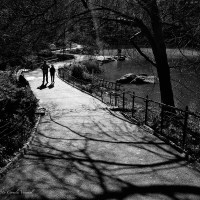 On a Meandering Path