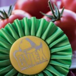 Best Tomatoes at the CVEX Home & Garden Arts show