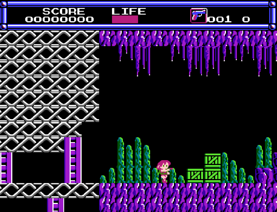 Layla NES Game