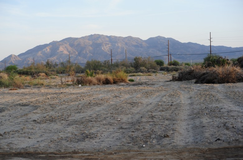 images/Lost Dogs of the Desert/empty-lot--possible-future-shelter_8589002079_o