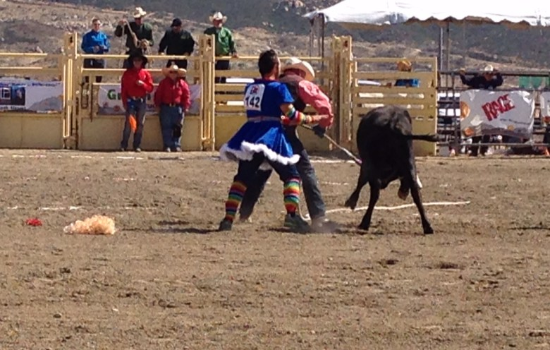 images/Palm Springs Hot Rodeo 2015 Saturday/a-wig-casualty_17357497535_o