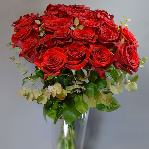 buket-crvene-ruže-sa-zelenilom