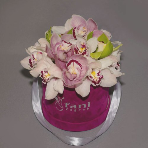 orhideje-u-flowerbox-kutiji