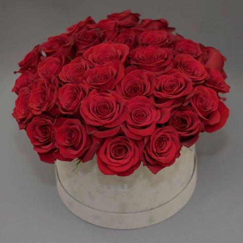 crvene-ruže-u-flowerbox-kutiji-od-sivog-pliša