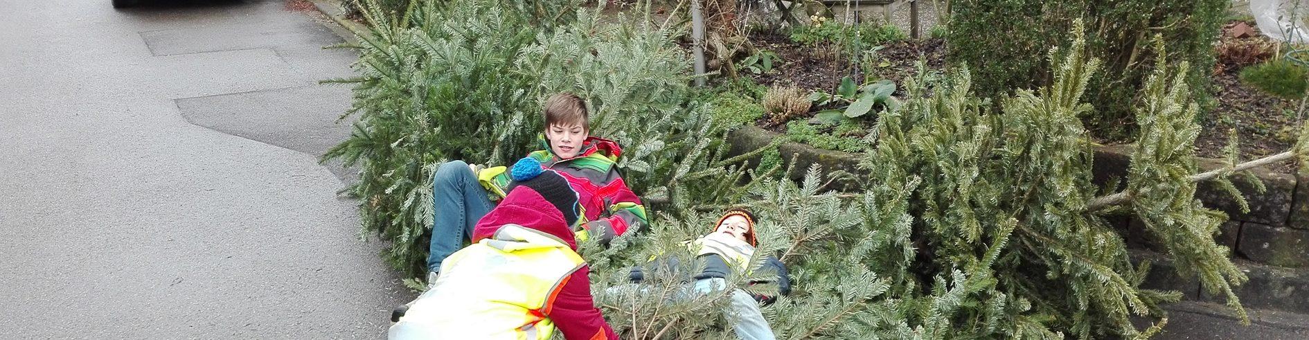 09.01.2016 Christbaumsammlung mit 50 Helferinnen und Helfern