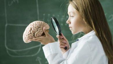 otak anak