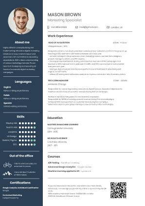 Online CV Maker  Professional CV Builder  Make the