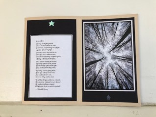 Loring Starr: Trees chapbook #2, pages 7 & 8, Wallace Berry poem and Angiolo Manetti photo