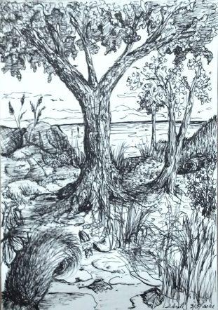 Deb Sigel: Quiet Woodlands–Ink on watercolor paper