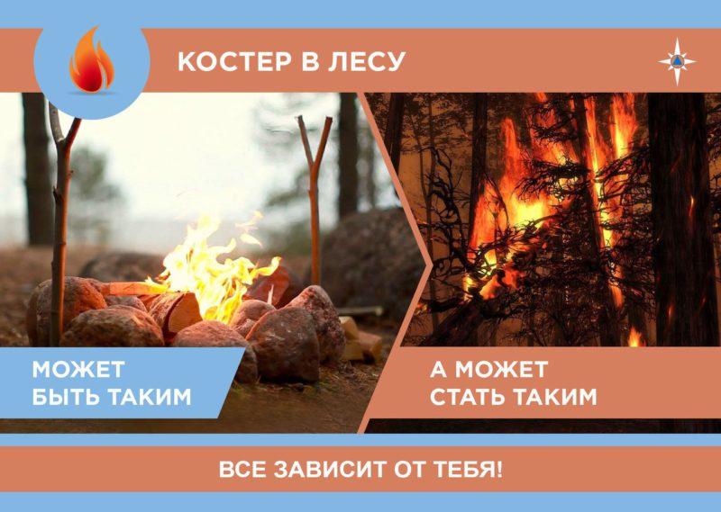 Пожарная безопасность в лесу (1)